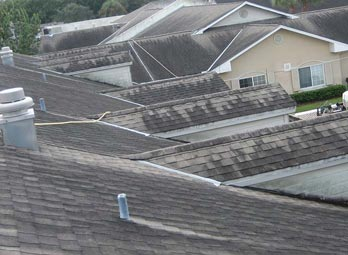 Orlando Shingle Roof Cleaning
