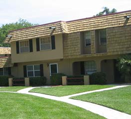 Orlando Roof Staining